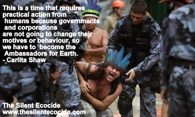 The Silent Ecocide